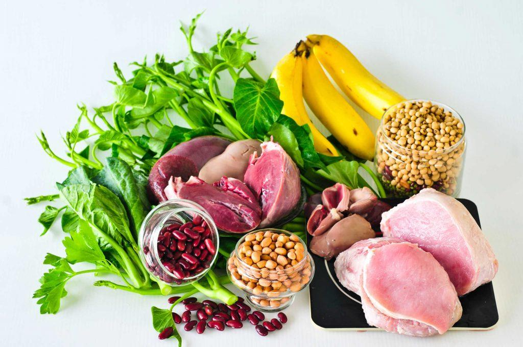 gizi dan protein