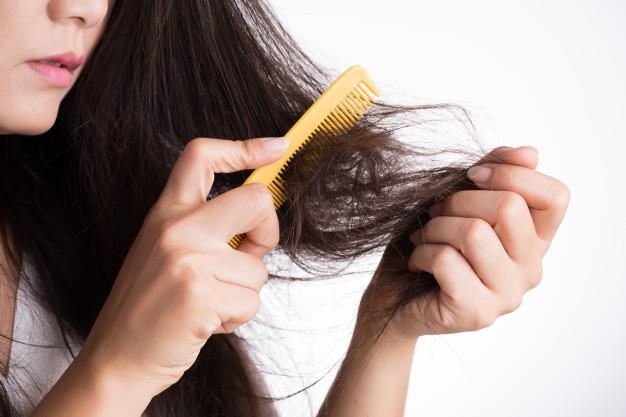 solusi mengobati rambut rontok
