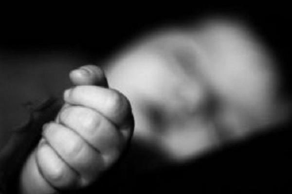 Bahaya Susu Formula yang Tidak Higienis terhadap Bayi – FAJAR 2