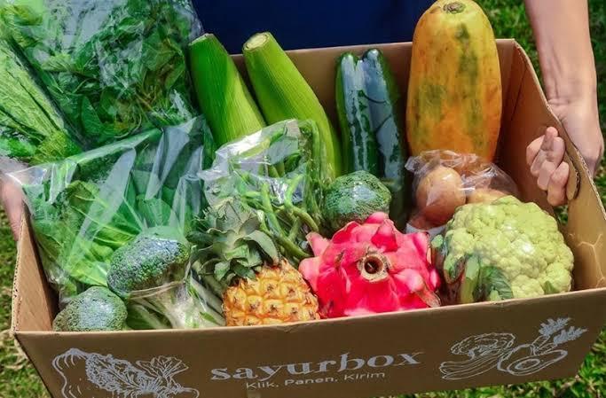Tubuh Kekurangan Asupan Sayuran, Ini 5 Tandanya – FAJAR 2